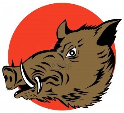 3214156-wild-hog[1]